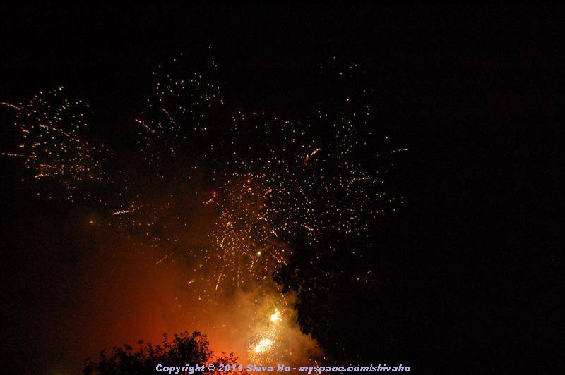 ds2011-08-13n-080Medium.JPG