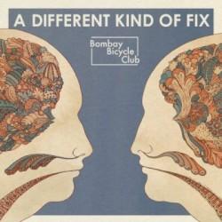Bombay Bicycle Club - Leave It (Flipbook Remix)